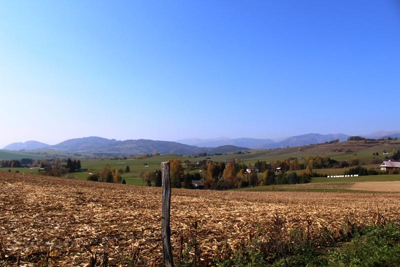 Krásny slnečný mierne svahovitý pozemok v Brezne časť Rohozná